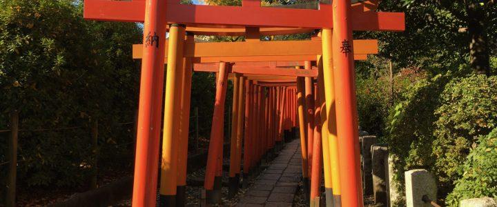 A Visit to Nezu Jinja, Part 2