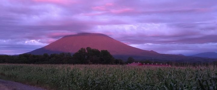 CHAPTER 25: Hokkaido Nature Tours