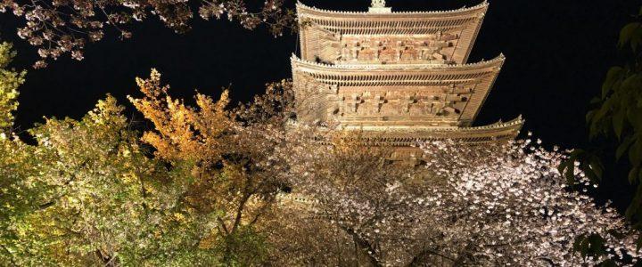 The Tō-ji Cherry Blossom Illumination in Kyoto (Tō-ji, Part 3 of 3)